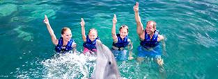 promocion-nado-con-delfines-primax-4-delphinus.png