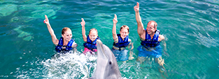 deals-swim-with-dolphins-primax-4-delphinus.png