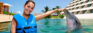 deals-swim-with-dolphins-the-one-delphinus.png