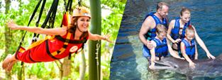deals-swim-with-dolphins-xenses-park-delphinus.png