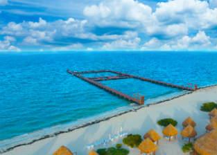 Nada con delfines en Dreams Playa Mujeres Golf & Spa Resort