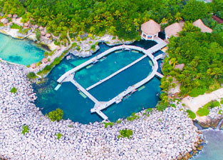 Nadar con delfines en Riviera Maya, Cancún - Delphinus