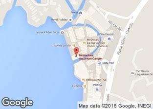 Swim with dolphins in Cancun, Interactive Aquarium
