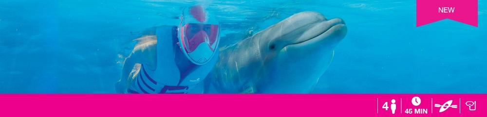 Nado-con-delfines-Nature-Connection.jpg