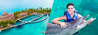 deals-swim-with-dolphins-xcaret-playa-del-carmen-delphinus.jpg