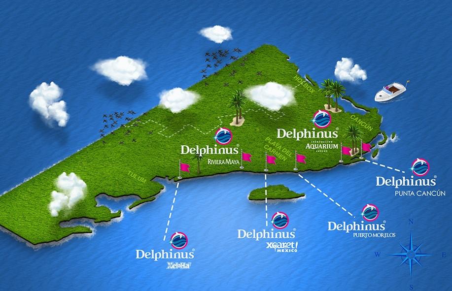 nado-con-delfines-certificacion-mapa-mexico