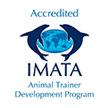 nado-con-delfines-certificacion-imata.jpg