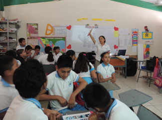 swim-with-dolplhins-in-mexico-ambiental-education-1.jpg