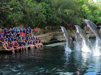 swim-with-dolplhins-in-mexico-ambiental-education-garbage-3.jpg