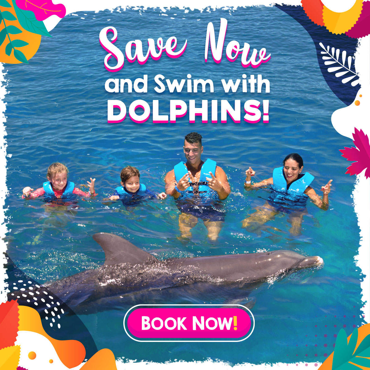 Delphinus swim with dolphins cancun and riviera maya