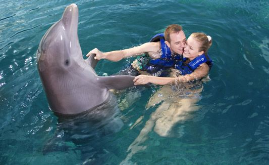 swim with dolphins in Mexico for couples - Delphinus