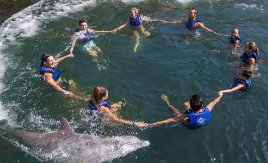 swim-with-dolphins-in-mexico-delphinus-splash.jpg
