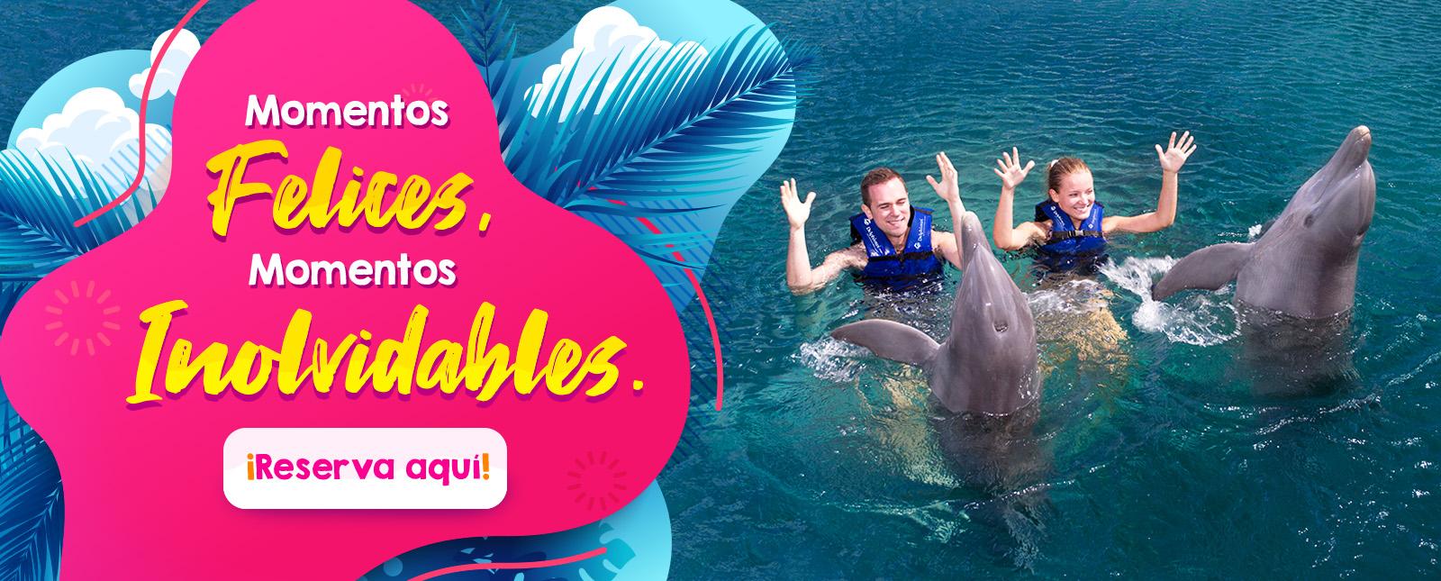 Momentos Felices Momentos Inolvidables nado con delfines cancun y riviera maya