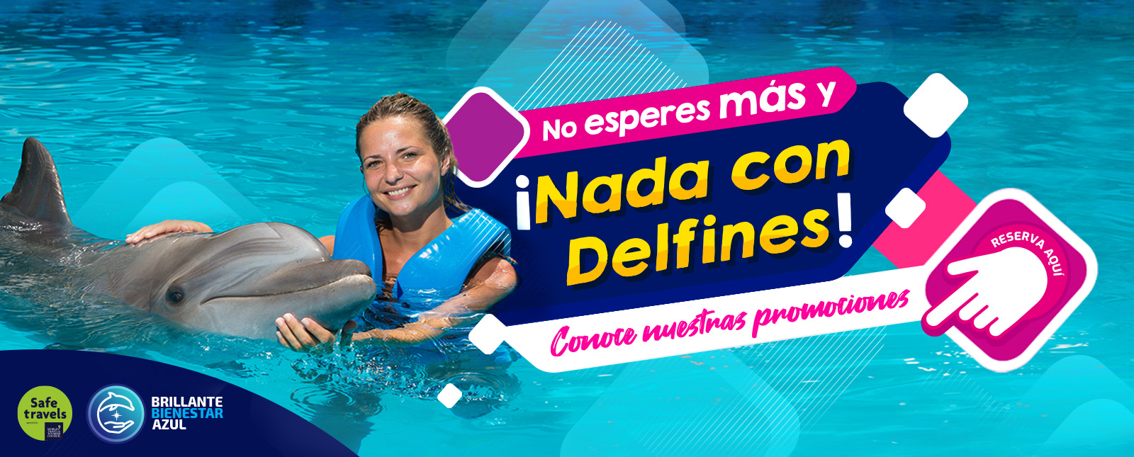 Nado con delfines en cancun y riviera maya